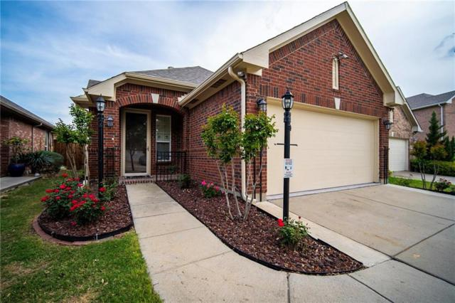 15908 Alvarado Drive, Prosper, TX 75078 (MLS #14075607) :: Real Estate By Design