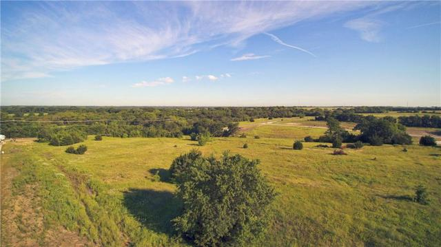 20 Buchanan Court, Weston, TX 75097 (MLS #14079004) :: Real Estate By Design