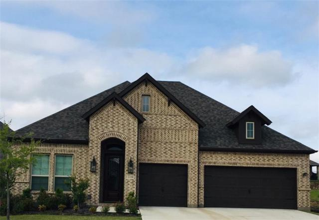 11358 Bull Head Lane, Flower Mound, TX 76262 (MLS #14079691) :: Real Estate By Design