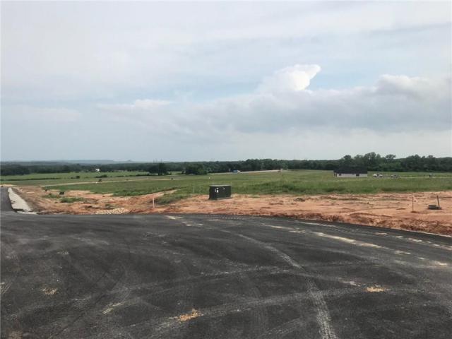 712 Coastal Meadows Court, Granbury, TX 76049 (MLS #14081875) :: Real Estate By Design