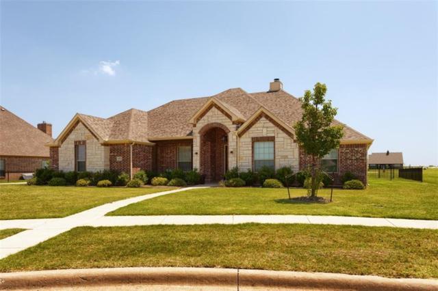 1705 Eagle Glen Pass, Gunter, TX 75058 (MLS #14083498) :: The Mitchell Group