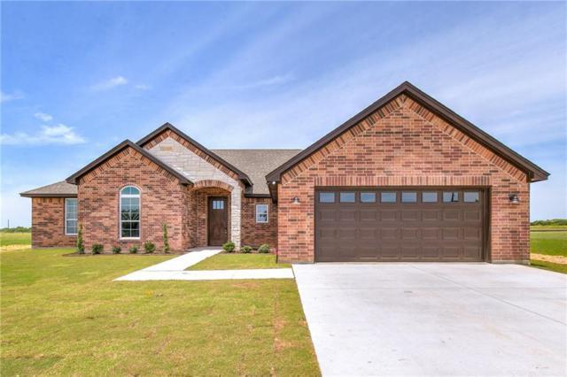 8104 Old Brock Road, Brock, TX 76087 (MLS #14086113) :: Lynn Wilson with Keller Williams DFW/Southlake