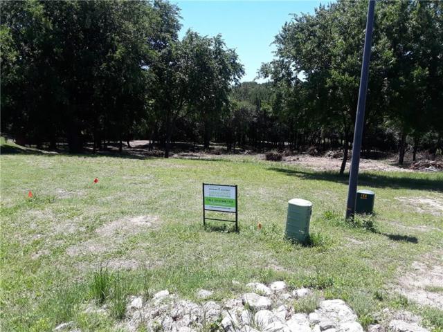 1735 Right Field Court, Cedar Hill, TX 75104 (MLS #14088146) :: Baldree Home Team