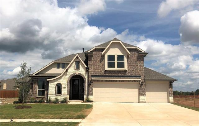 1227 Bear Creek Drive, Anna, TX 75409 (MLS #14088892) :: RE/MAX Town & Country