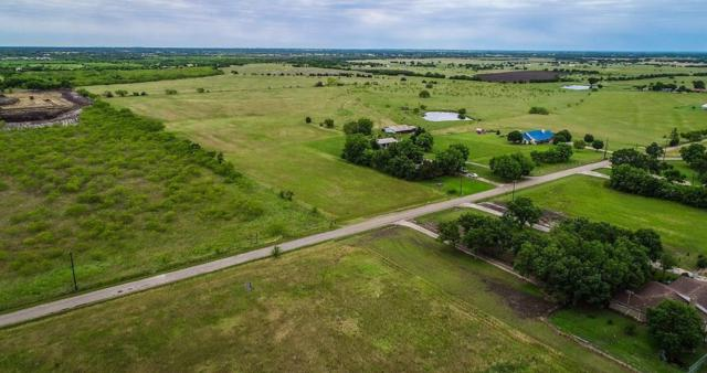 225 Valek Road, Ennis, TX 75119 (MLS #14094313) :: The Juli Black Team