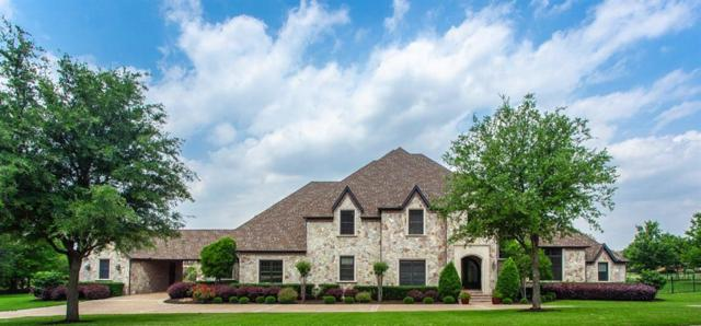 5205 Lighthouse Drive, Flower Mound, TX 75022 (MLS #14098862) :: Kimberly Davis & Associates