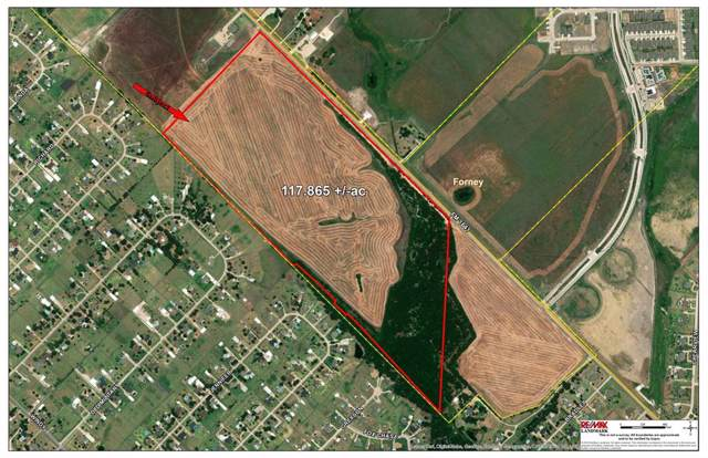 00 Fm Road 1641, Forney, TX 75126 (MLS #14099131) :: Lynn Wilson with Keller Williams DFW/Southlake