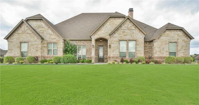 216 Pinnacle Peak Lane, Weatherford, TX 76087 (MLS #14104944) :: The Heyl Group at Keller Williams