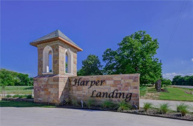 451 Michelle Way, Fairview, TX 75069 (MLS #14105582) :: The Heyl Group at Keller Williams
