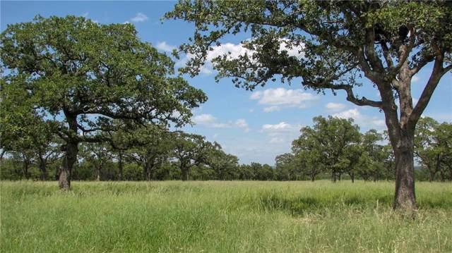 01 Grimes Road, Mineral Wells, TX 76067 (MLS #14108753) :: The Heyl Group at Keller Williams