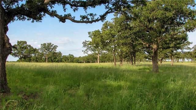 02 Grimes Road, Mineral Wells, TX 76067 (MLS #14108778) :: The Heyl Group at Keller Williams