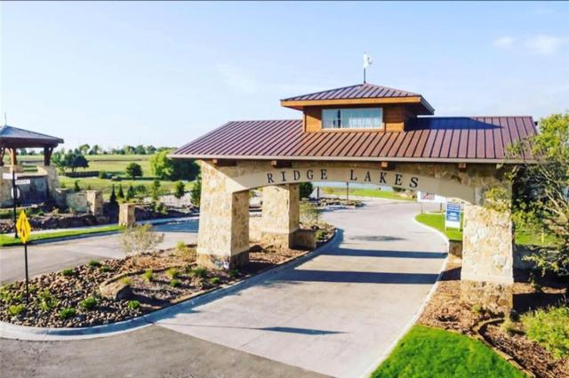 552 Lodge Hill Drive, Heath, TX 75032 (MLS #14109455) :: All Cities Realty