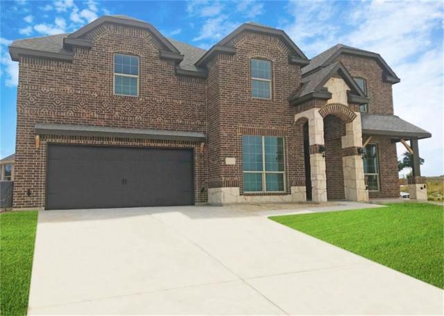 6829 Fire Dance Drive, Benbrook, TX 76126 (MLS #14110381) :: Potts Realty Group