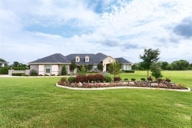 4428 Lake Breeze Drive, Mckinney, TX 75071 (MLS #14113611) :: Lynn Wilson with Keller Williams DFW/Southlake