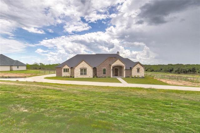 101 Hondo Circle, Millsap, TX 76066 (MLS #14117298) :: The Mitchell Group