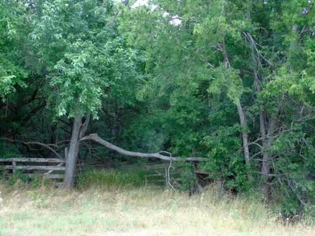TBD Fm 1377, Blue Ridge, TX 75424 (MLS #14117356) :: RE/MAX Town & Country