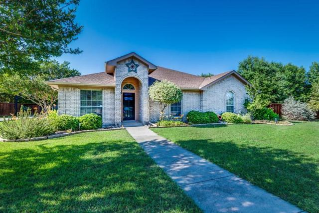 741 Hill Meadow Drive, Midlothian, TX 76065 (MLS #14118128) :: The Sarah Padgett Team