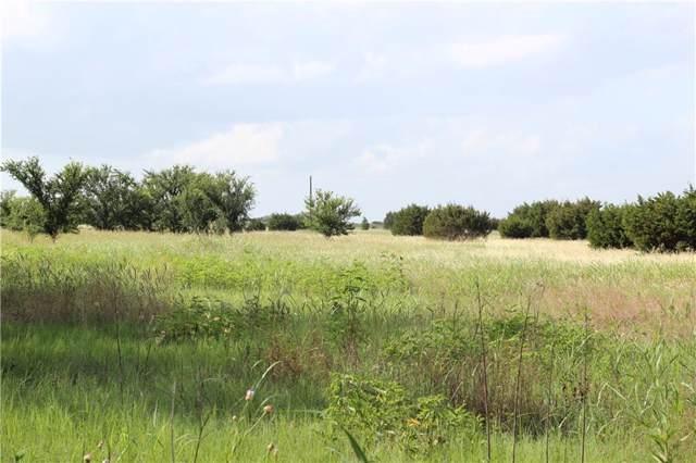 TBD Farm Road 219, Dublin, TX 76446 (MLS #14122517) :: Lynn Wilson with Keller Williams DFW/Southlake