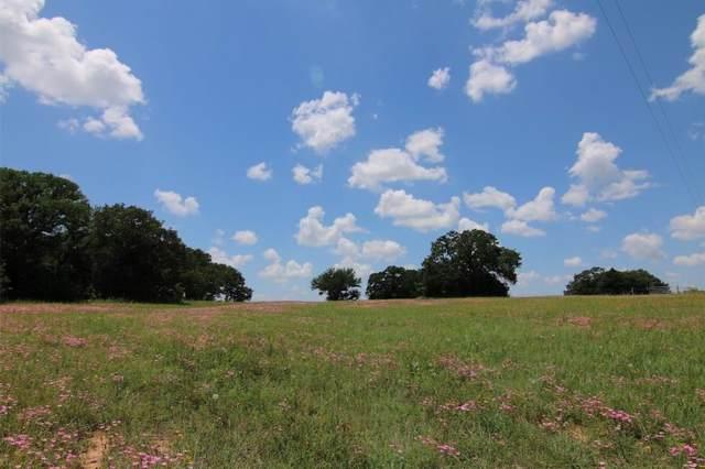 TBD B County Road 2195, Decatur, TX 76234 (MLS #14132213) :: Lynn Wilson with Keller Williams DFW/Southlake