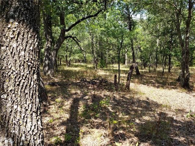239 Mustang Springs, Sunset, TX 76270 (MLS #14152203) :: The Heyl Group at Keller Williams