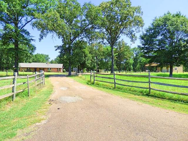 538 Cr 1250, Mount Pleasant, TX 75455 (MLS #14152793) :: Robbins Real Estate Group