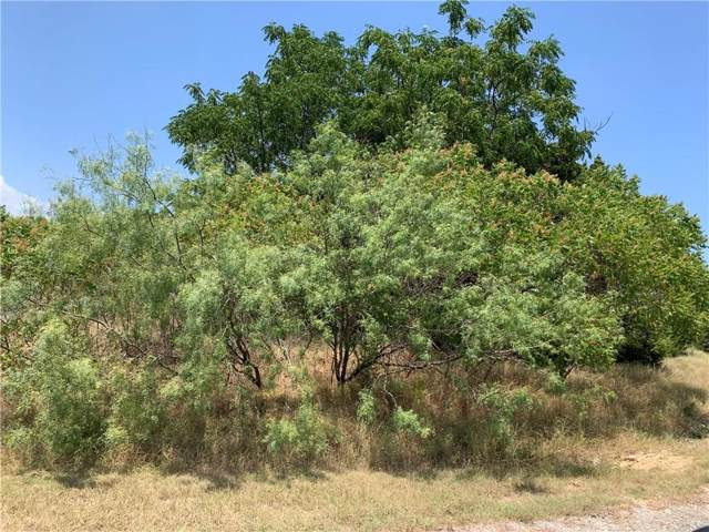 44199 Fringewood Drive, Whitney, TX 76692 (MLS #14166646) :: The Mauelshagen Group