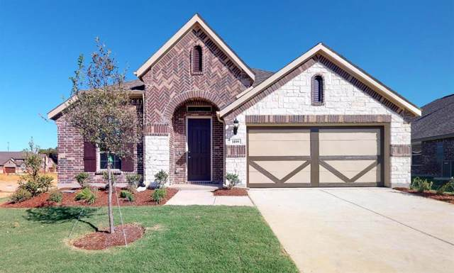 1108 Quail Dove Drive, Little Elm, TX 75068 (MLS #14167605) :: Baldree Home Team