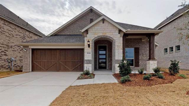 3124 Chinese Fir Drive, Heath, TX 75126 (MLS #14173329) :: RE/MAX Landmark
