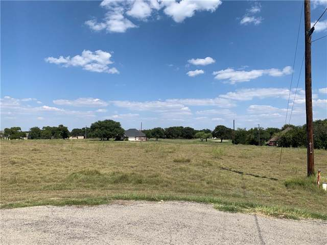 13047 Overview Court, Whitney, TX 76692 (MLS #14178172) :: The Heyl Group at Keller Williams