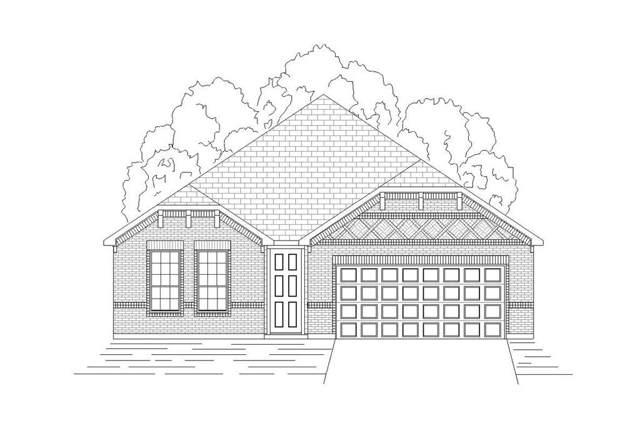 2816 Prairie Trail Avenue, Aubrey, TX 76227 (MLS #14187387) :: Real Estate By Design