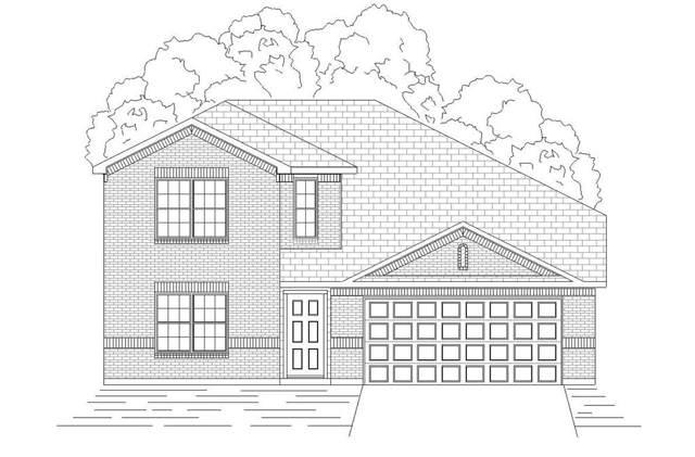 3136 Josefina Lane, Heartland, TX 75126 (MLS #14190004) :: The Kimberly Davis Group