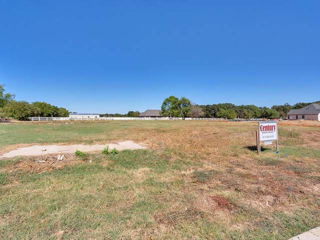 325 Mobile Drive, Copper Canyon, TX 75077 (MLS #14210337) :: Baldree Home Team