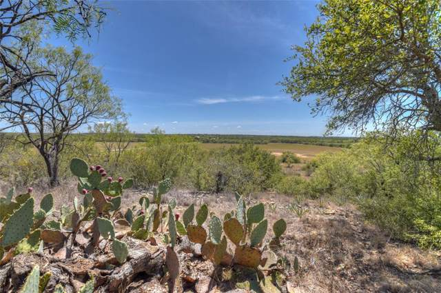 8725 L2 Hwy 377 S, Brookesmith, TX 76827 (MLS #14217550) :: The Good Home Team