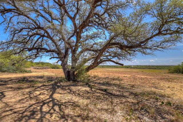 8725 L8 Hwy 377 S, Brookesmith, TX 76827 (MLS #14217592) :: The Good Home Team