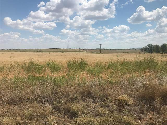 TBD Fm 2746, Anson, TX 79501 (MLS #14218890) :: The Hornburg Real Estate Group
