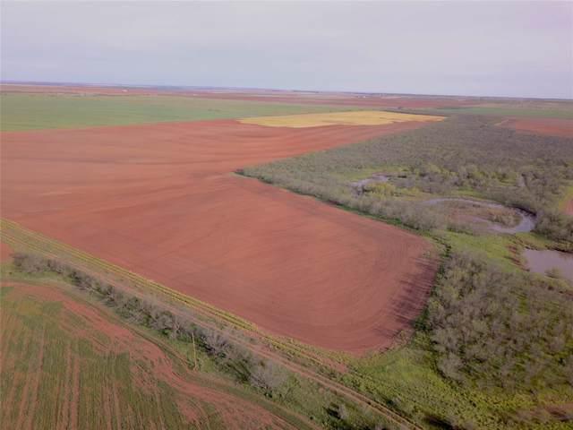 240 Acres Cr 427, Rule, TX 79547 (MLS #14219552) :: The Kimberly Davis Group