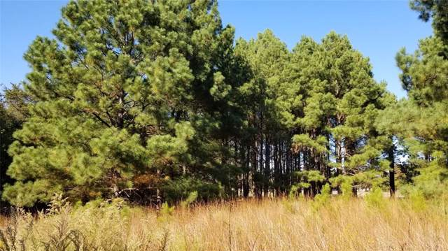Lot 172 Zebra Crossing, Larue, TX 75770 (MLS #14220453) :: Frankie Arthur Real Estate