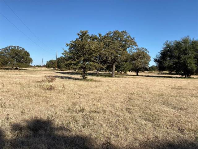 Lot 2 Cool Junction Road, Millsap, TX 76066 (MLS #14224042) :: Ann Carr Real Estate