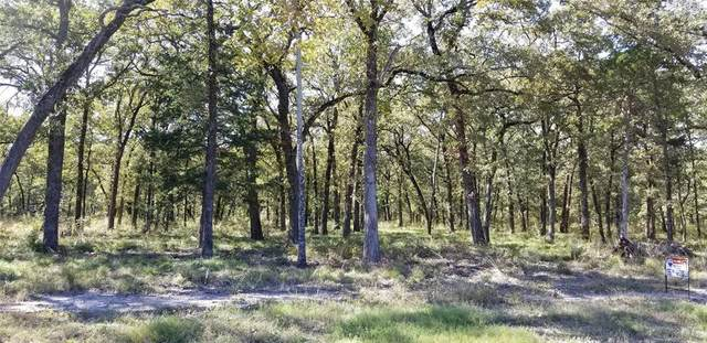 Lot 33 Vintage Shore Drive, Quinlan, TX 75474 (MLS #14224488) :: Premier Properties Group of Keller Williams Realty