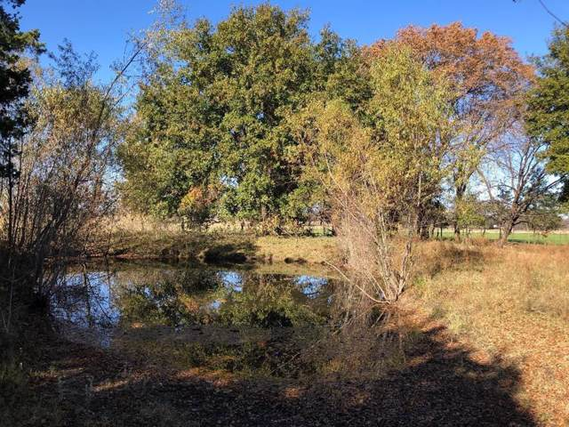 927 Private Road 257, Telephone, TX 75488 (MLS #14226949) :: Robbins Real Estate Group