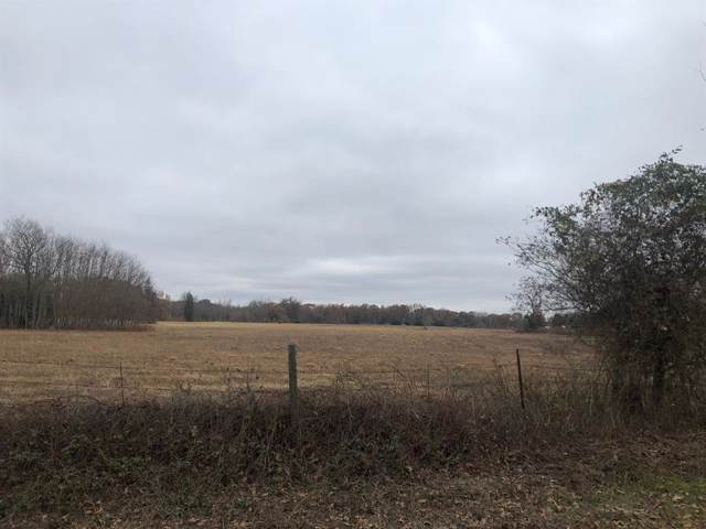 0000 County Road 4903 Royal Moun, Athens, TX 75751 (MLS #14227797) :: Premier Properties Group of Keller Williams Realty
