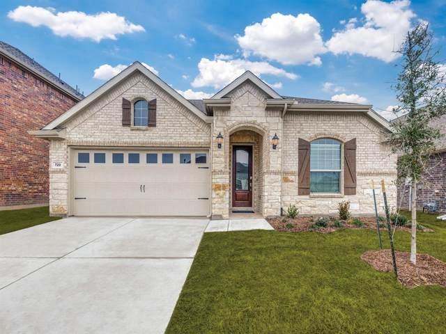 729 Mercy Street, Forney, TX 75126 (MLS #14229739) :: RE/MAX Landmark