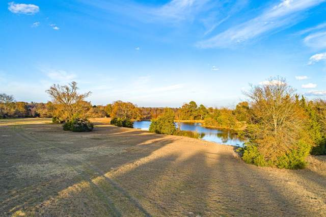 TBD Fm 115, Scroggins, TX 75480 (MLS #14234756) :: All Cities Realty