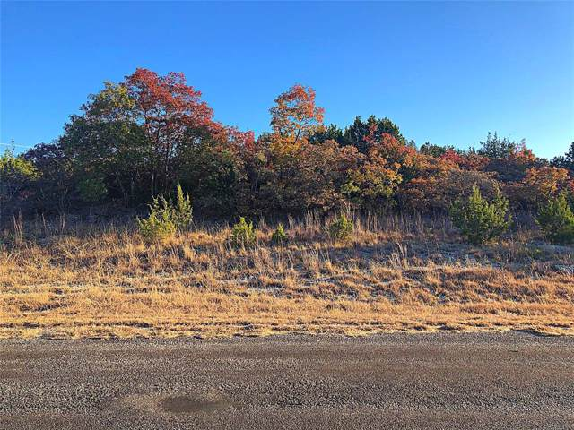 495 Christine S Way, Bluff Dale, TX 76433 (MLS #14235308) :: RE/MAX Town & Country