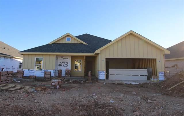 273 Sophia Lane, Abilene, TX 79602 (MLS #14239225) :: Ann Carr Real Estate