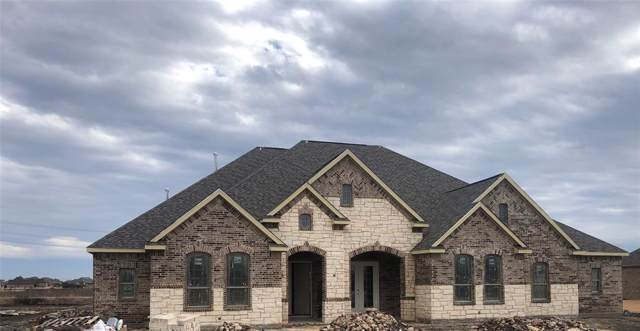 4700 Bryce Drive, Parker, TX 75002 (MLS #14239965) :: The Hornburg Real Estate Group