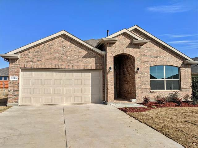 1203 Tiburon Trail, Cleburne, TX 76033 (MLS #14240508) :: The Rhodes Team