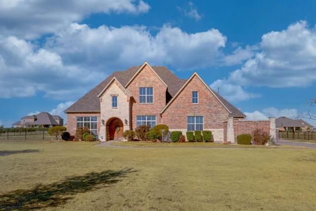 390 Livestock Drive, Rockwall, TX 75032 (MLS #14241686) :: All Cities Realty