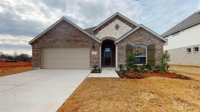 1005 Embers Lane, Denton, TX 76201 (MLS #14244380) :: Real Estate By Design
