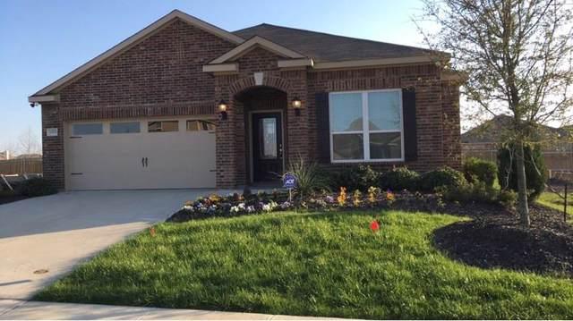 1305 Shumard Drive, Princeton, TX 75407 (MLS #14258293) :: Caine Premier Properties